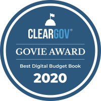 2020 Best Digital Budget Book